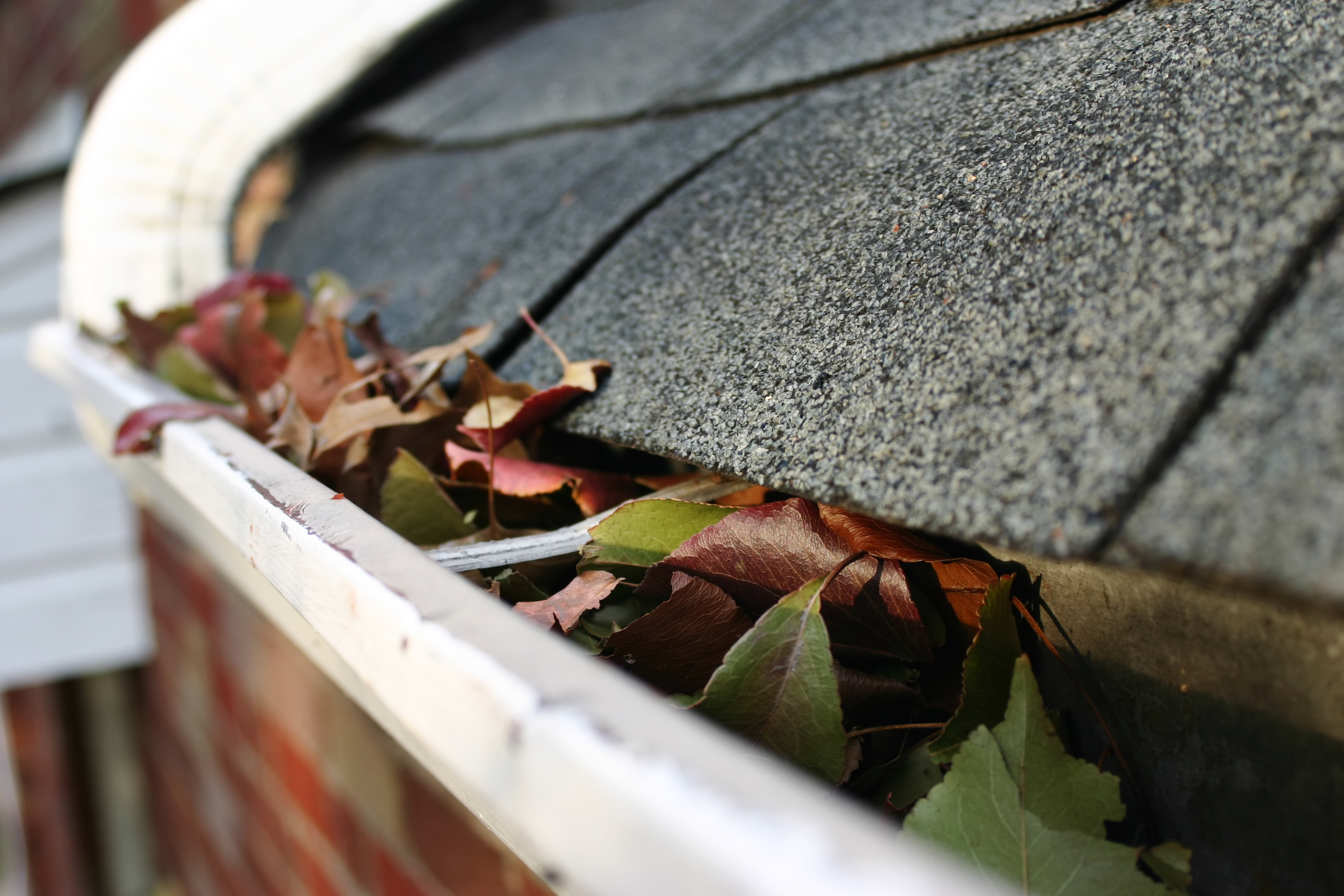 gutter cleaning newtown square pa